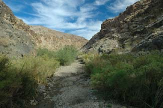 Pleasant Canyon