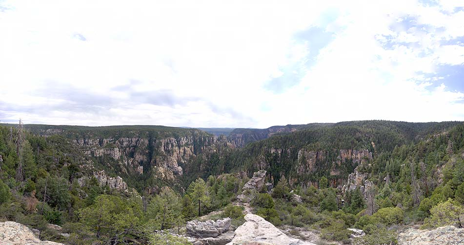 West Fork of Oak Creek Canyon from East Buzzard Point, June 25, 2010