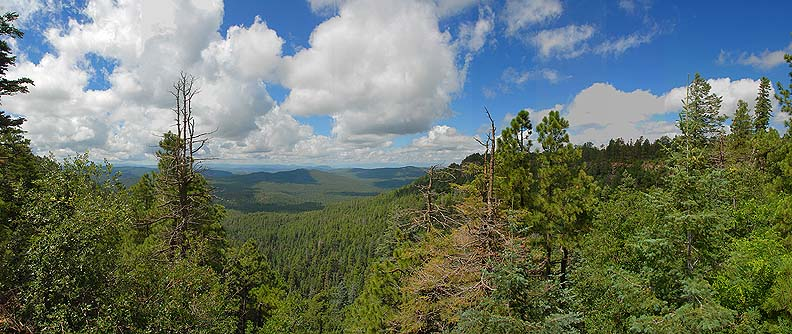 Mogollon Rim Visitor Center