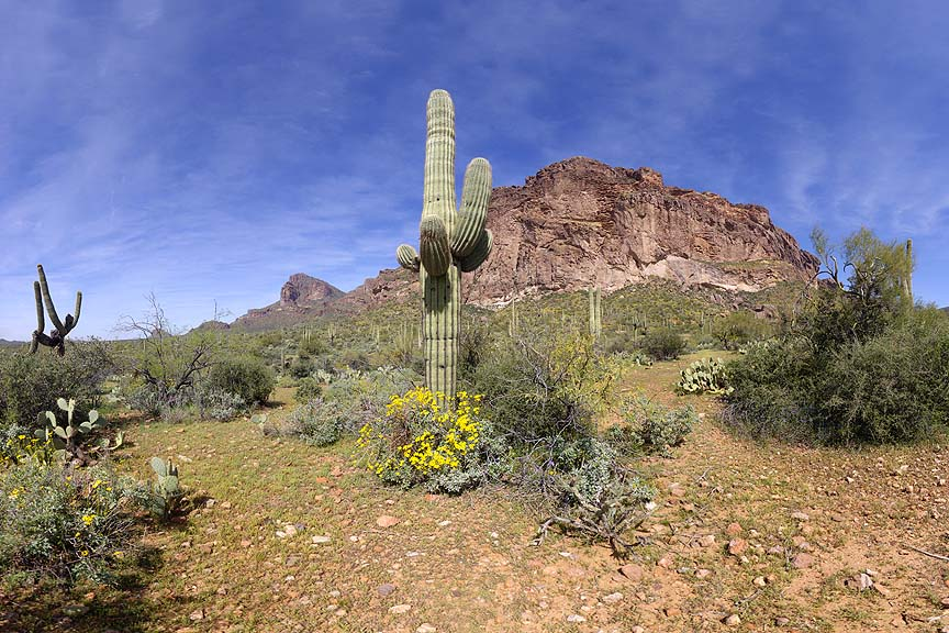 Superstition Mountains, March 19, 2013