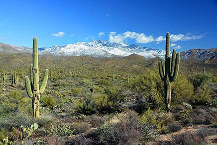 Four Peaks, January 2, 2015