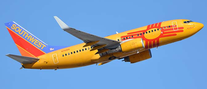 Novelty Airline Liveries