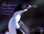 Birds of the South Atlantic and Antarctica: 2009 Calendar