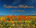 California Wildflowers: 2009 Calendar