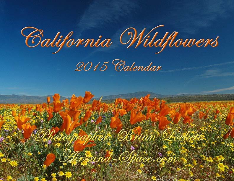 Lockett Books Calendar Catalog: California wildfowers