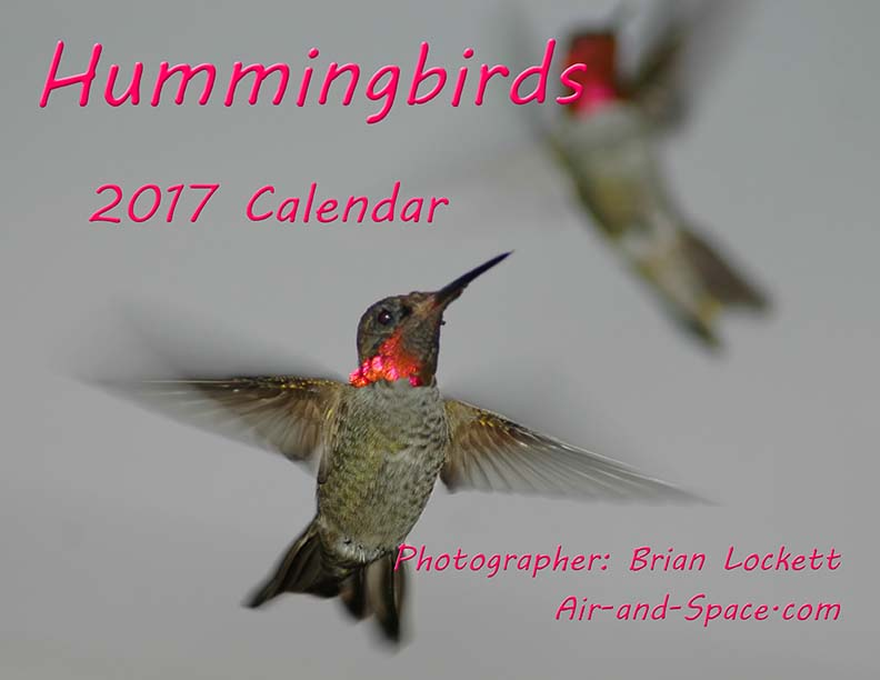Lockett Books Calendar Catalog: Hummingbirds