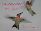 Hummingbirds: 2009 Calendar